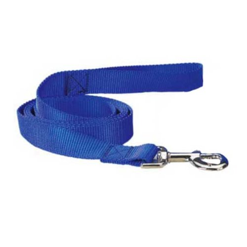 Guardian Gear Nylon Dog Lead with Nickel Plated Swivel Snaps, 5/8-Inch, Blue, My Pet Supplies