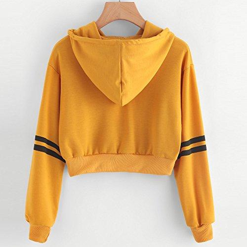 L'automne Manche Unie Bande Rond Décontractée Jaune1 Aux Femmes Impression Col Hiver shirt Longue Tops Printemps Chemisier Sweat Couleur Rovinci 1nq5AA