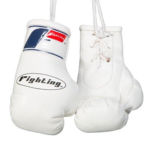 Fighting Sports Mini Boxing Gloves, White (Mini Fighting Sports)