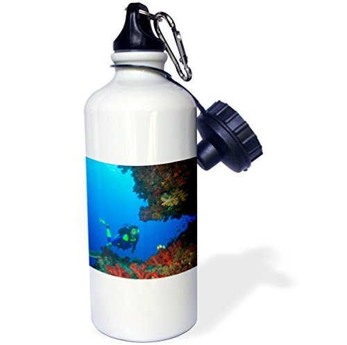 3dRose wb_84894_1 Diver, Coral-Lined Arc, Beqa Island, Fiji-Oc01 Sws0111-Stuart Westmorland Sports Water Bottle, 21 oz, White