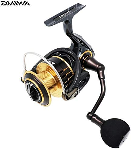 Daiwa (Daiwa) Spinning Reel 17 Theory 4000 JP F/S: Amazon.es ...