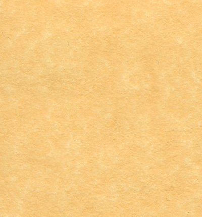 Antique Gold Parchment Paper 24lb Size 85 X 11 Inches 50 Sheets Per Pack