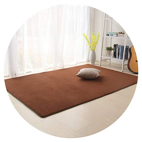 Coral Fleece Large Carpets for Living Room Anti-Slip Home Great Room Rugs Ding Room Parlor Area Rugs Bedroom Bedside Mats,Coffee,80X200cm