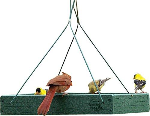 Woodlink NAGGPLAT Going Green Bird Feeder, 12-3/4-Inch - Quantity 4 ()