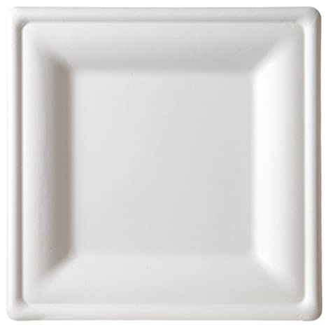 Amazon.com Eco-Products Compostable Square Sugarcane Plates - Large - Case of 250 - EP-P023 Home Improvement  sc 1 st  Amazon.com & Amazon.com: Eco-Products Compostable Square Sugarcane Plates - Large ...
