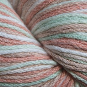 Cascade Avalon Yarn (Worsted Weight Cotton Acrylic Blend) Multi - Floral 321