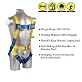 Safety Harness Fall Protection Kit, Construction