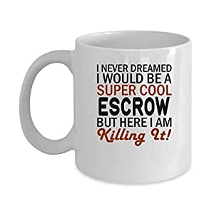 Funny ESCROW Jobs Mugs - ESCROW But Here I Am Killing It! Best Sarcastic Mug Gift For Him,Her, Adult.. On Thanks Giving, Christmas Day, White 11Oz Coffee Mugs