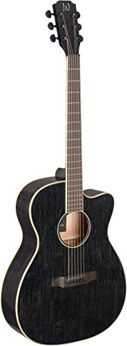 James Neligan 6 String Acoustic-Electric Guitar (YAK-ACFI) ()