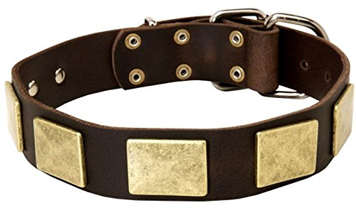 Brown fits for 22 inch dog's neck size22 inch Gorgeous Brown Leather Dog Collar  Mighty Hound   1 1 2 inch (40 mm)