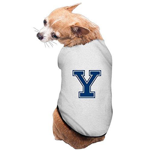 Boston Terrier Breed Standard - 3