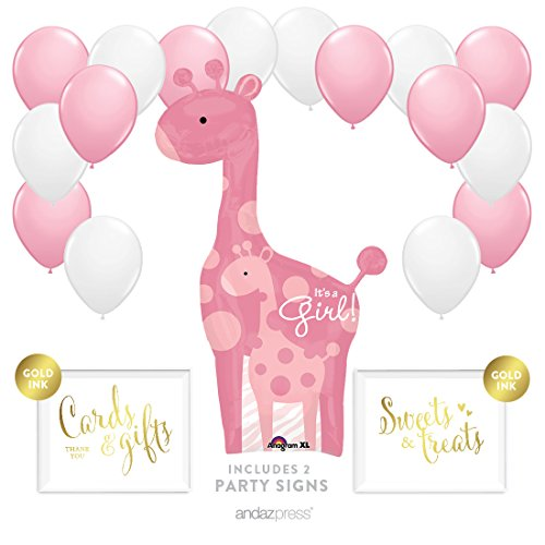 Andaz Press Balloon Party Kit with Signs, Girl