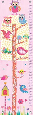 Oopsy Daisy Little Owls Growth Chart By Rachel Taylor 12 By 42 Inches by Oopsy Daisy