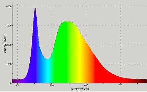 SCS iluminación Nite Interruptor bombilla. Dormir Mejor, naturalmente. No azul LED noche luz ámbar/blanco luz diurna. Soporte natural patrones de sueño, ...