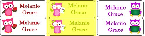 30 Personalized Waterproof Name Labels Girl Owls Back To School Name Labels Stickers Labels Personalized Name Labels Personalized Tags Favor Tags Daycare Labels Name Tags Book Labels Waterproof Labels For Kids Lunchboxes