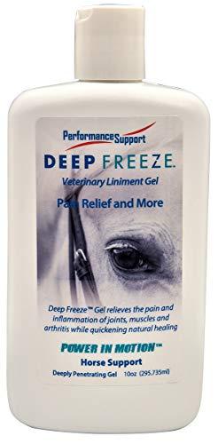 Manna Pro Deep Freeze Gel for Horses, 6-10 oz - Deep Freeze Gel