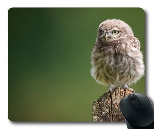 Mouse pad,owl for Sale Tree Stump owl Bird,Mouse Pad with Stitched Edges -