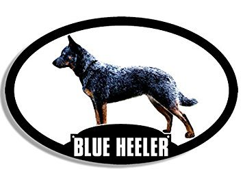 MAGNET Oval BLUE HEELER Magnet(dog breed decal acd cattle silhouette) Size: 3 x 5 inch ()