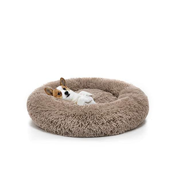 """Orthopedic Dog Bed Comfortable Donut Cuddler Round Dog Bed Ultra Soft Washable Dog and Cat Cushion Bed (23""""x 23""""x 5"""") (Brown)"""