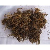 CAPPL Dry Sphagnum Moss