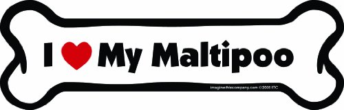 Imagine This Bone Car Magnet, I Love My Maltipoo, 2-Inch by 7-Inch (Accessories Maltipoo)