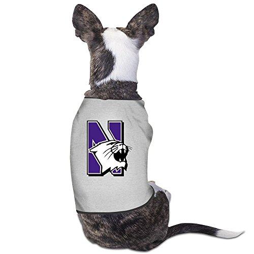 Dog Costume Fails (Northwestern University Football Sign Dog Costumes Custom ColoName)
