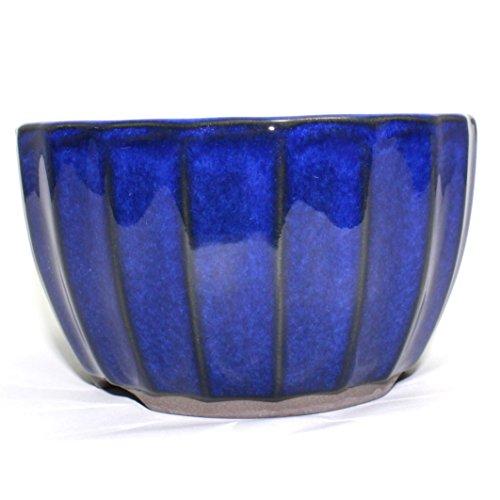 Bonsai Pot Ceramic Chrysanthemum Flower Shape Glazed (5