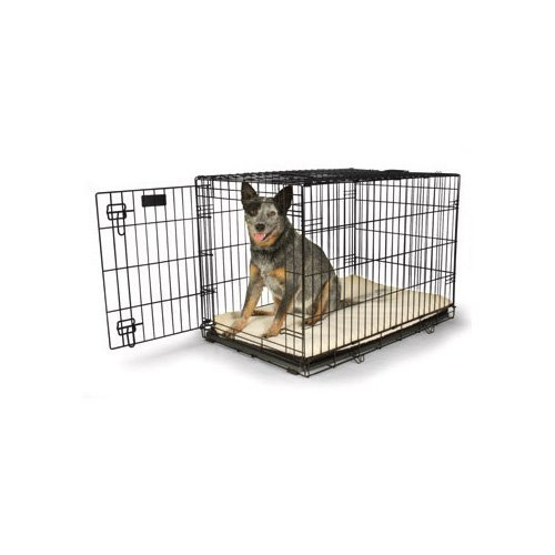 Petco Classic 1-Door Dog Crate, Large, Black