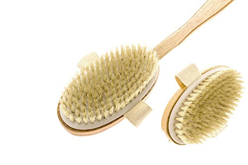 Premium Bamboo Body New Essentials product image