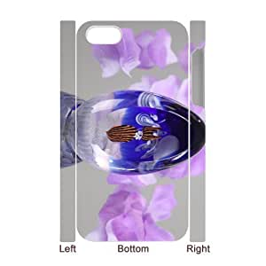 Iphone 4,4S Transparent crystal ball 3D Art Print Design Phone Back Case DIY Hard Shell Protection TY080352