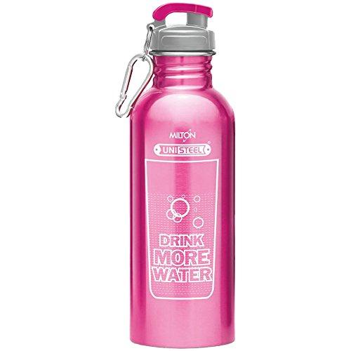 623bf47744e Milton Virtue 750 Stainless Steel Water Bottle