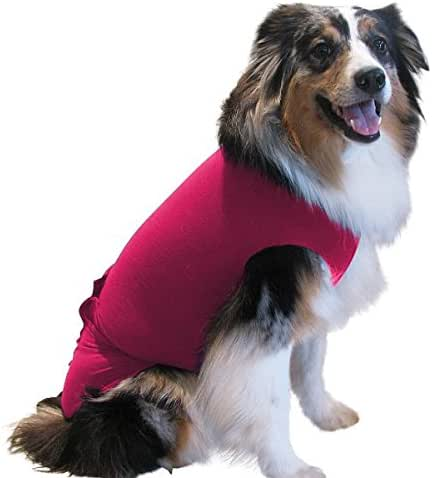 Washable Disposable Dog Diapers Keeper - For Male and Female Dogs - Wrap Around Legs for Superior Fit - Fits Puppies To Adult Dogs - A Simple Solution To An Everyday Problem Small - XL (ML, Pink)