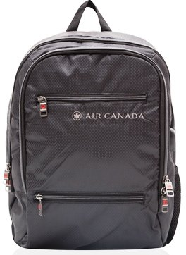 Air Canada 17 Lightweight Business Backpack with RFID Pocket and USB Charging Port
