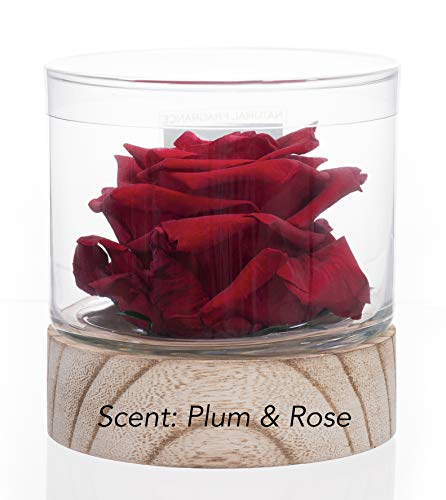 (Sustainable Home Scent 12oz. A Real Fragrance Flower with Lasting abilities Similar to Scented Candle, Wax and Aroma Diffuser (Red/Fragrance L'Amour Rouge))