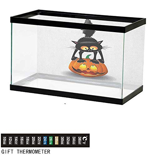 Jinguizi HalloweenAquarium BackgroundBlack Cat on Pumpkin Drawing Spooky Cartoon Characters Halloween Humor Art36 L X 16