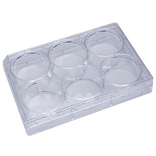 lates, Flat Bottom Wells, Polystyrene, 100 Plates/Unit (Non Treated Microplates)