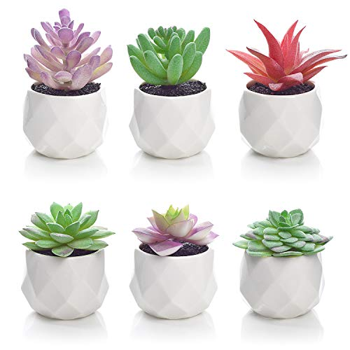 Lvydec 6 Pack Artificial Succulent Plants, Mini-Sized Fake Succulent Plants in Pots for Home Bath Office Shelf Decoration, Porcelain Pots]()