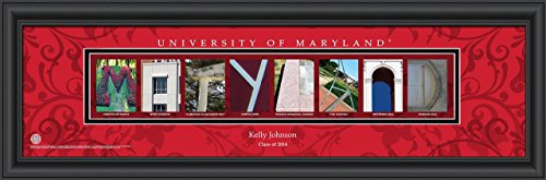 Maryland Terrapins Art Glass - 2