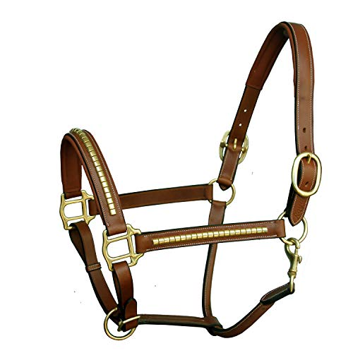 Exion Brass Clincher Halter and Brass Buckles | Equestrian Show Jumping Padded Halter | English Horse Riding Premium Tack | Conker | Horse