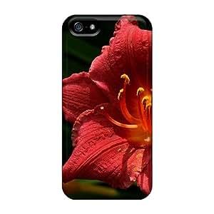 Fashion Design Hard Case Cover/ EYXPWFw1063OCzAv Protector For Iphone 5/5s