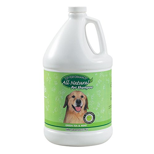 (Green Tea & Mint Shampoo Professional Quality Dog Grooming Concentrate 1 Gallon )
