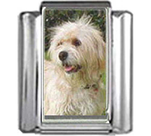 Stylysh Charms Wheaten Terrier Dog Photo Italian 9mm Link DG400
