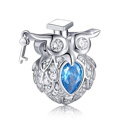 FOREVER QUEEN Graduate Owl Charm 925 Sterling Silver Little Wise Doctor Owl Charm with Cap Crafted with 5A Zircon Compatible with Standard Bracelet Graduation Gifts