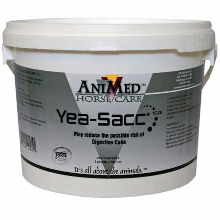 AniMed YEASACC10263#90535