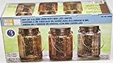 Inside Outside Garden Set of 3 Glass Jars with Mini LED Lights, Gold
