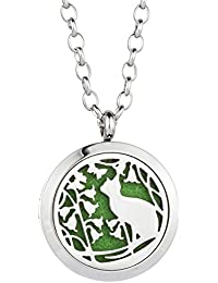Essential Oil Diffuser Necklace Aromatherapy Pendant Stainless Steel Locket Jewelry for Women, Kids, Boy, Girl