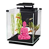 Penn Plax Simplicity Aquarium Kit Glass Cube, Filter, 3 Color Touch Control LED Light 5.5 Gallon