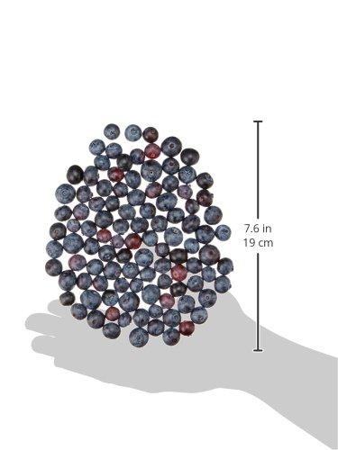Organic Blueberries, 6 oz.