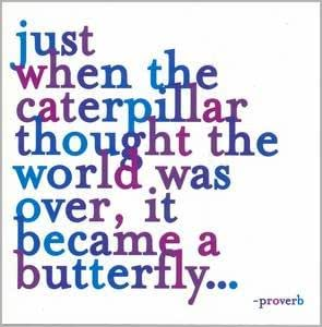 """""""Just When The Caterpillar Thought The World Was Over. Color Magnet"""""""