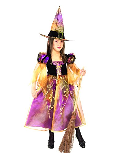 Elegant Witch Child Costumes (Rubie's Elegant Witch Child's Costume, Small)